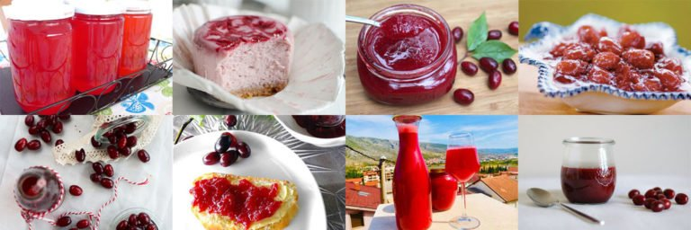 Healthy cornelian cherry recipes