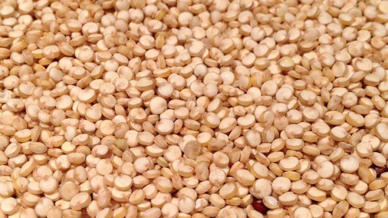 12 Amazing Quinoa Health Benefits